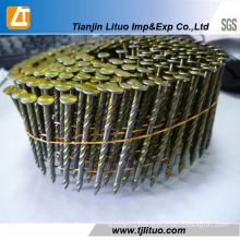 Twisted Shank Painted or Polished Coil Nail for Pallet