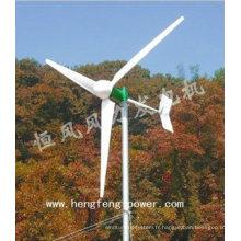 Système de turbine de vent de 3kW pour usage domestique, générateur de turbine de vent 3KW, système de générateur électrique 3KW vent
