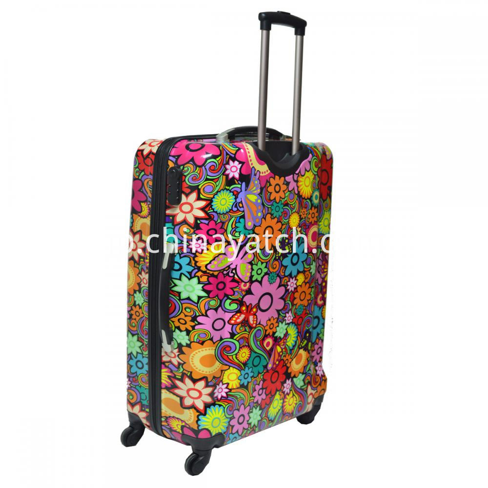 Gun Color Trolley Luggage Set