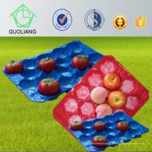 Bandeja perfurada Thermoformed das inserções da bolha do fabricante de China para o uso da indústria de empacotamento da fruta fresca