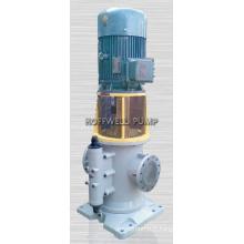 Pompe à vis d'huile moteur homologuée CE 3GCLS110X2