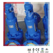 """3"""" Wc9 Class 300 RF Relief Valve for Power Plant"""