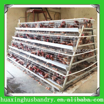 china popular and good quality layer poultry house