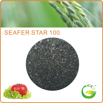 Bio Organic Seaweed Extract Fertilizer