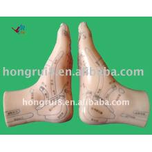 HR-515B иглоукалывание ног модель12CM, иглоукалывание ноги