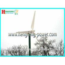 Chinesische hochwertige neue Magnet Generator 30kw