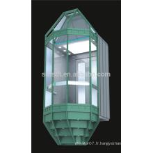 Fabrication, ascenseur de tourisme (prix) ascenseur pièces de la technologie japonaise (FJG8000-1)