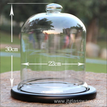 D22*H 30cm Glass Bell Cloche For Display