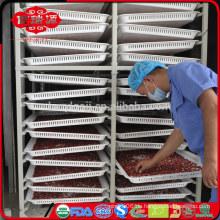 2014's Crop Low Pestizid Gojiberry in guter Qualität und Preis