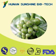 Grüne Kaffeebohne-Chlorogenic-Säure-Superabnehmen-Produkt