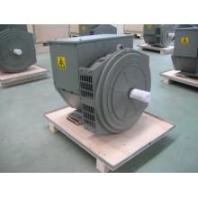Бесщеточный генератор 8kVA-16kVA Jdg164