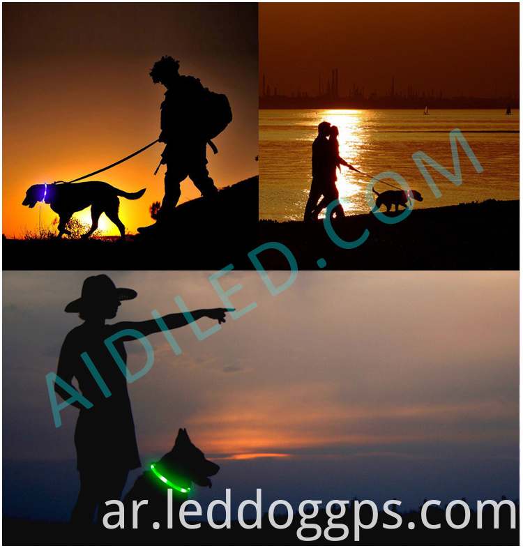 Led Dog Collar Rechargeable Waterproof