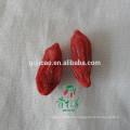 2016 новый сертифицированный лайчи органические ягоды годжи