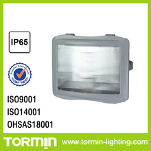 ZY8110 lámpara de proyector de emergencia