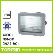 ZY8110 de lampe de projecteur d'urgence
