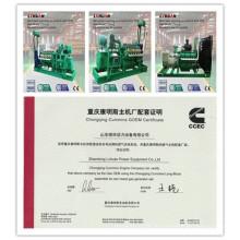 China CUMMINS Generator Hersteller 20 Kw - 600 Kw Biomasse Genset