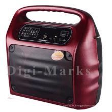 Hot Sale Karaoke Portable avec Bluetooth et haut-parleur FM