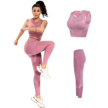 Conjunto de 2 peças para mulheres, roupas de ginástica para ioga