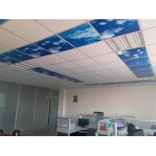 Ceiling Mounted Carbon Crystal Infrared Electric Heater