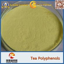 White Tea Extract Powder, White Tea Powder 90% Polyphenols