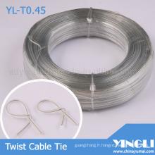 Désactivez le collier de serrage Double torsion plat (YL-T0.45)