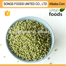 Exporter les haricots mungo verts de Chine