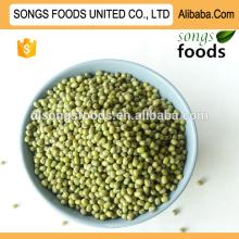 Exportar feijão verde da china