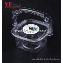 Factory direct supply plastic PET material clear transparent portable cake/fruit/salad box with handle plastic injection mould