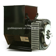 Ce, ISO aprobó el alternador sin cepillo famoso de la marca de China 80kw / 100kVA (JDG274C)