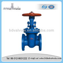 Casting flange end Parallel double disc gate valve