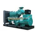 300 kW Diesel generador establece para la venta
