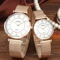 Мода пользовательских логотип Япония PC21 сетка наручные часы для пары