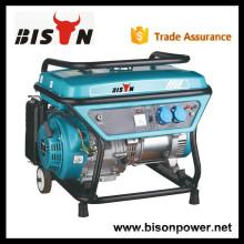 BISON (CHINA) Nueva tecnología 3kw de potencia nominal Biogas generador de motores