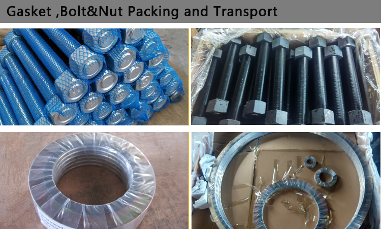 gasket bolt packing and transport
