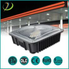 High Brightness 50W 75W Led Canopy Lights