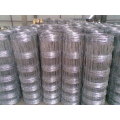galvanized stainless steel wire  fence long strong Fence black chain link fence