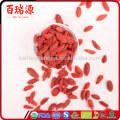 Alta taxa de exportação seca goji berries goji goji berry com baixo preço