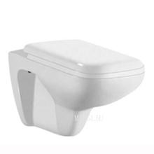 New design space saving sanitary ware washdown one piece wall hung hidden water tank toilet