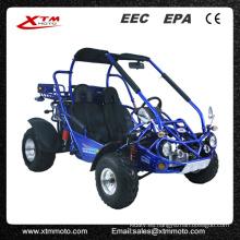 Automático diferencial 300cc 2 asiento Dune Buggy