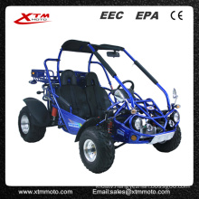 Automatic Differential 300cc 2 Seat Dune Buggy