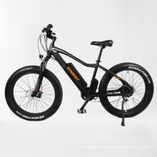 48V 750W Bafang rear brushless motor Electric Vehicle Mountain Bicycle