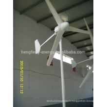Efficience élevée et faible RPM de générateur de turbine de vent libellule