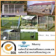 le chien seul extérieur court la chaîne clôture de clôture de chenil avec le toit imperméable