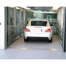 Professional Manufacturer China Car Elevators Price