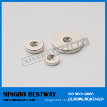 Magnetic Ring for Magnetic Separator