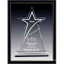 Американская звезда премии Кристалл 10 дюймов высотой (ню-CW864)