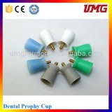 Green White Teeth Embedded Hard Cup Dental Dentist Disposable Prophy Cups