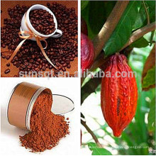Theobroma Cocoa L