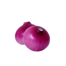 Factory direct supplier yellow onions