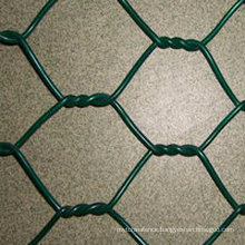 PVC Coated Hexagonal Wire Netting with High Quality